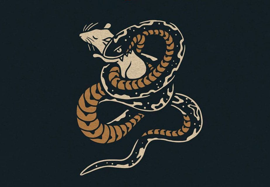 Showcase of Symbolic Designs That Feature Serpent Illustrations