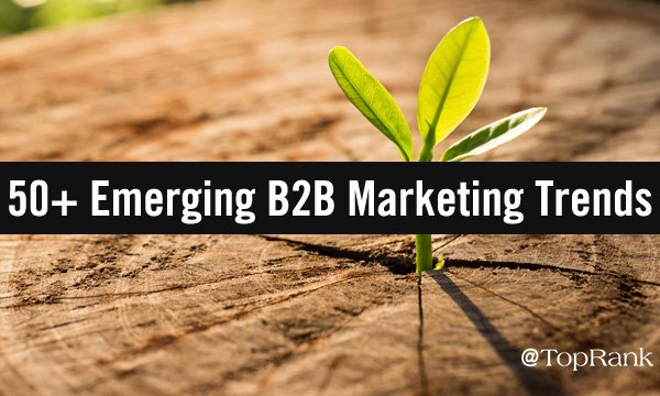 50+ Top B2B Marketing Insights From Recent Emerging Trend Reports