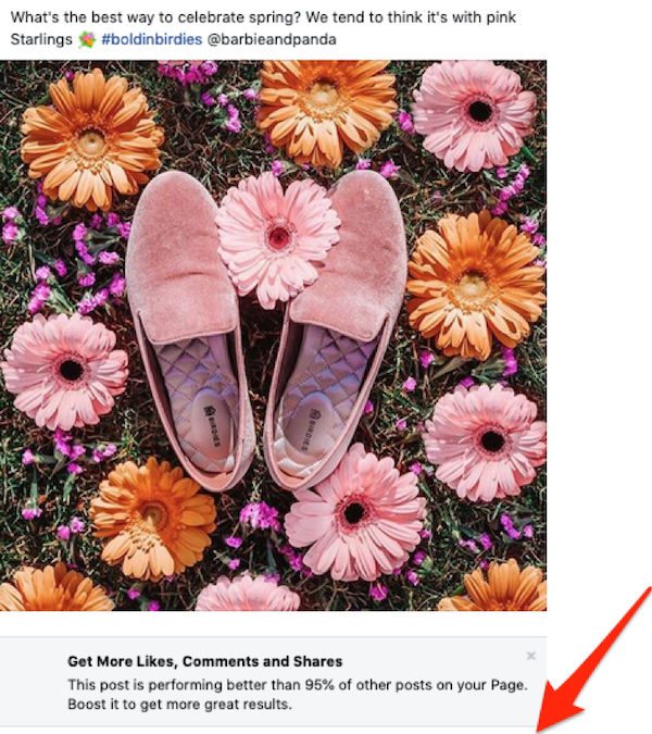 The Beginner's Guide to Facebook Sponsored Posts