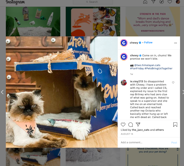 20 Instagram Marketing Tips for Business Growth